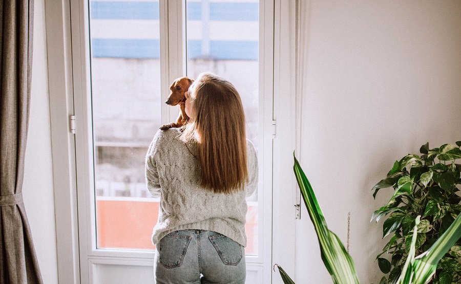 woman holding her dachshund and looking through the window from her apartment