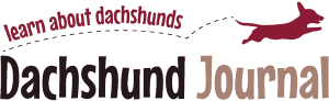 Dachshund Journal Retina Logo