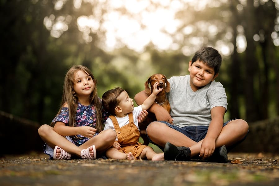 happy dachshunds with kids