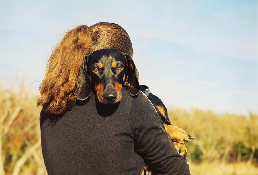 Girl with her beloved dachshund hugging