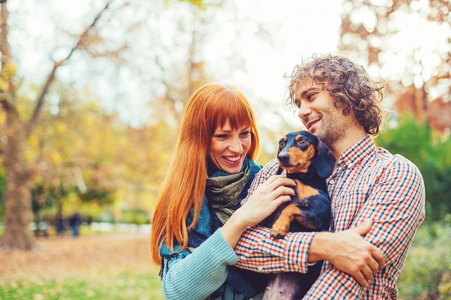 Couple playing with their dachshund