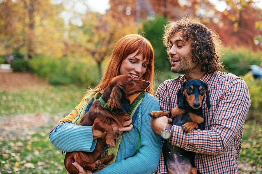 Couple playing with their two dachshund dogs in park